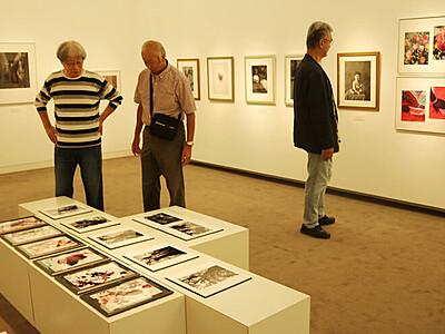 写真の芸術性伝えたい 砺波市美術館「アートペーパー展」、9月6日から