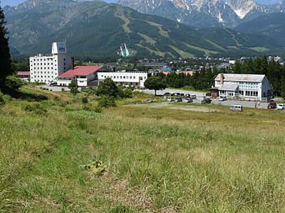 白馬国際トレイルラン  10月開催 大会形式変え2年ぶり