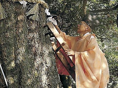 鎌打ち豊穣を願う 七尾・中能登3神社で神事