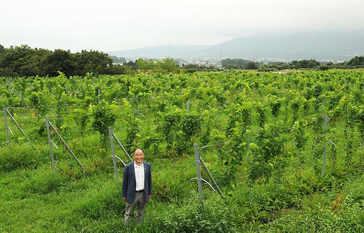 一面のブドウ畑で笑顔を見せる中山さん