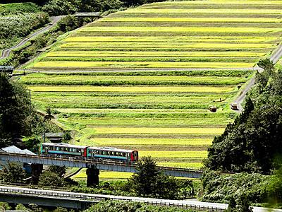 棚田走る列車