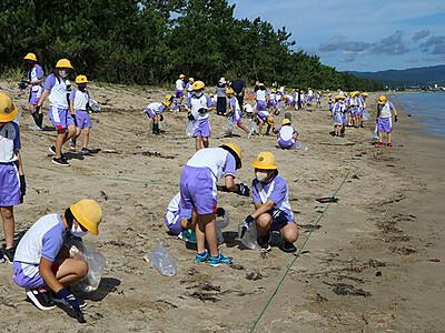 美しい海辺守ろう 氷見の島尾・松田江浜、児童が漂着物調査