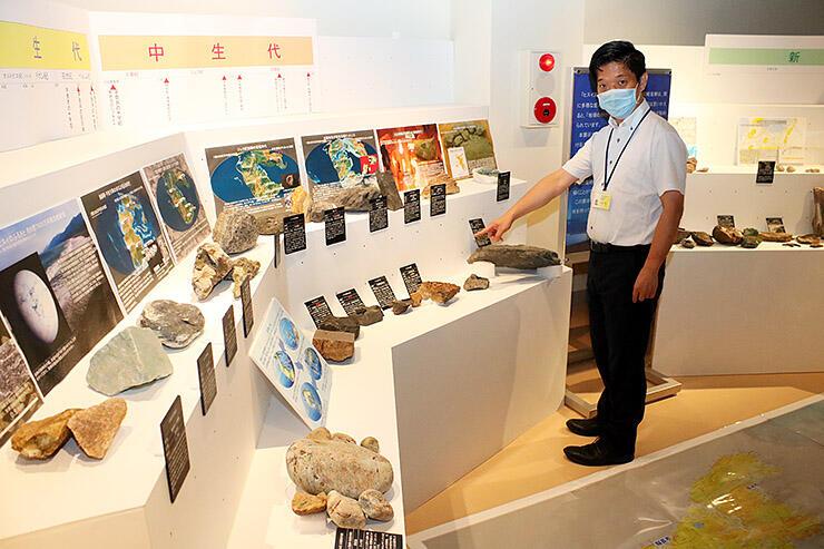 地域別に発掘された化石を並べた企画展