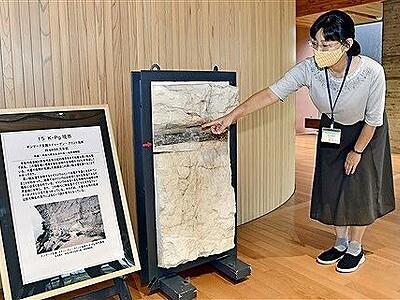 世界のシマシマ集結 福井県年縞博物館で特別展