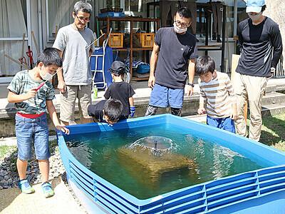 """釣った!イタセンパラの""""敵"""" ひみラボ水族館に外来魚つりぼり"""