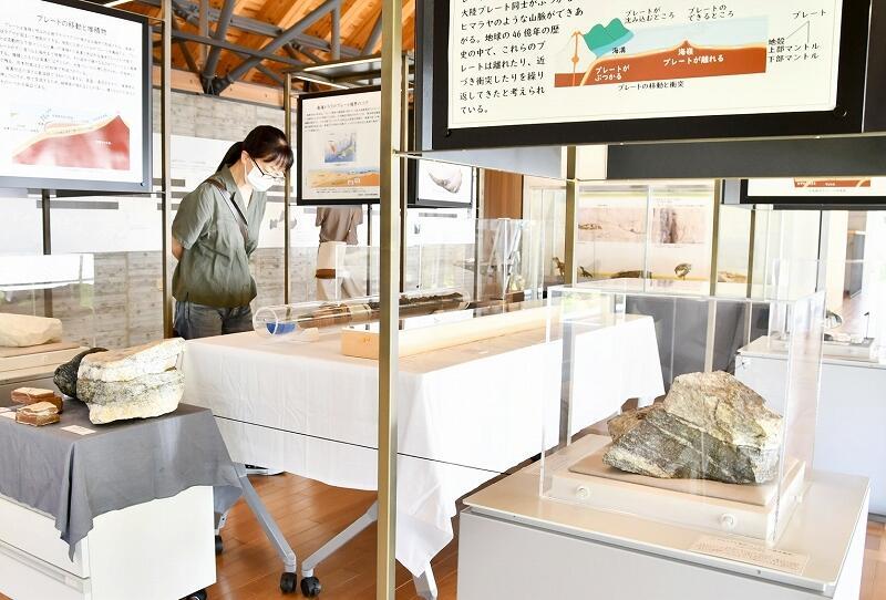 世界各地の岩石や地層などを展示する特別企画展=9月19日、福井県若狭町の県年縞博物館