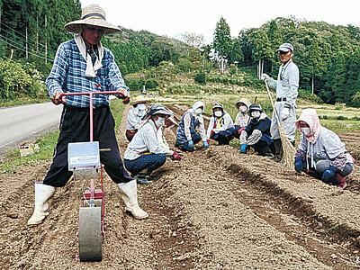 能登の伝統野菜 穴水で「唐川菜」種植え
