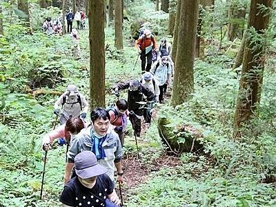福井豪雨で崩落の一乗谷城登山道が開通 地元保存協が復旧