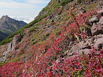 摩利支天への道、赤々と 御嶽山、広がる紅葉