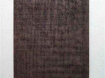 「描く」探究した絵画の軌跡 現代美術・五十嵐さん個展