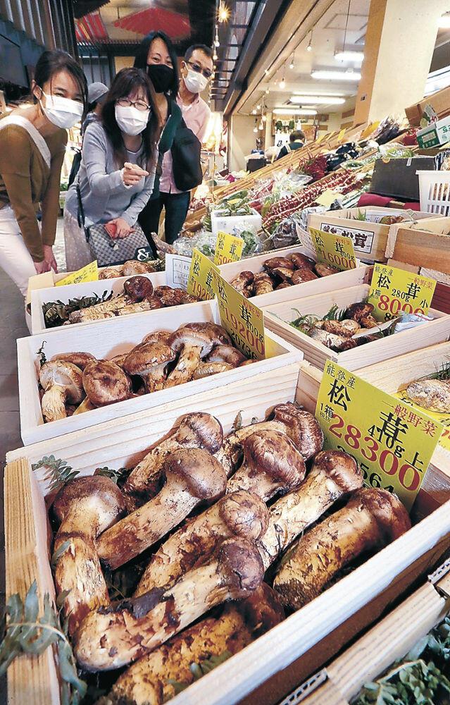 店頭で存在感を放つ石川県産マツタケ=金沢市の近江町市場