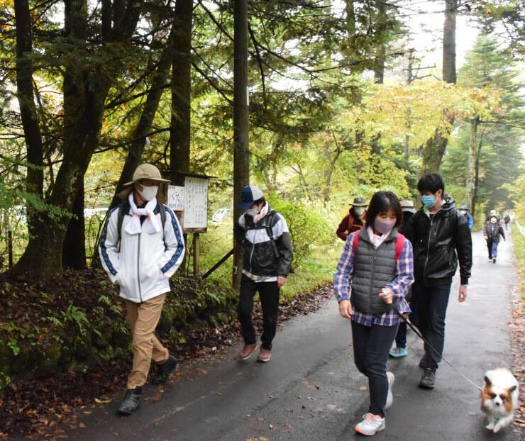 別荘地を歩く参加者