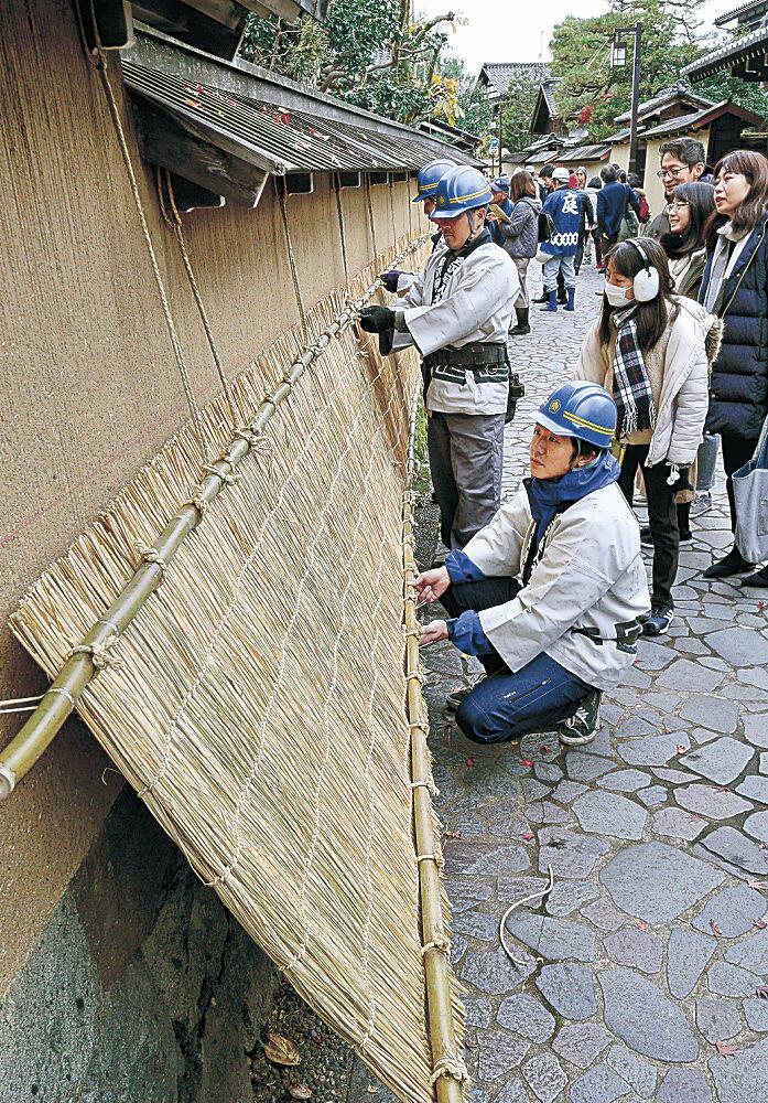 城下町金沢の冬の風物詩である薦掛けの作業=2019年11月30日、長町武家屋敷跡