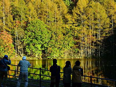 湖畔のキャンバス秋一色 茅野・御射鹿池一帯