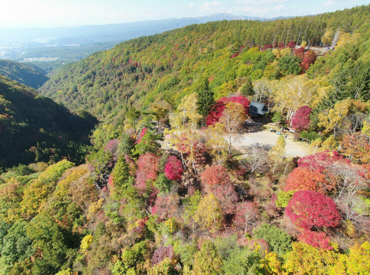 赤や黄の紅葉が広がる横谷渓谷=21日午後1時、茅野市北山(地権者らの承諾を得て小型無人機で撮影)
