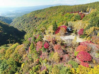 秋まとう木々、青空に映え 茅野・横谷渓谷