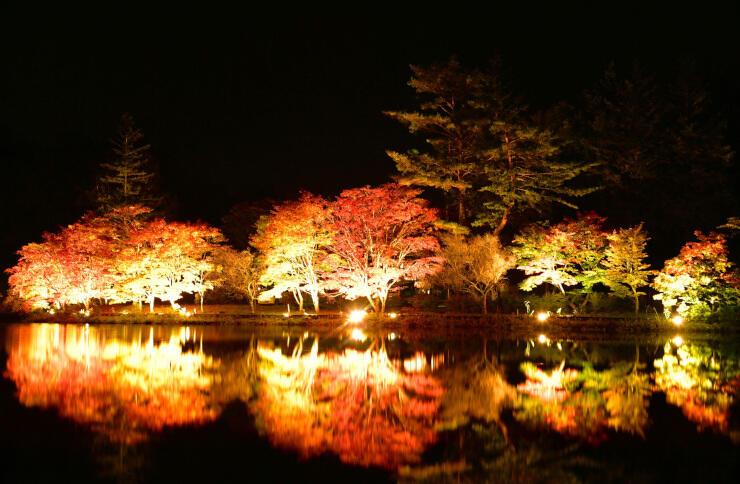 ライトアップされた紅葉が蓼科湖の湖面に映る=21日夜、茅野市北山