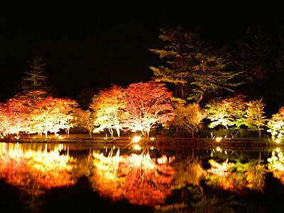 紅葉、鏡映し 蓼科湖の夜