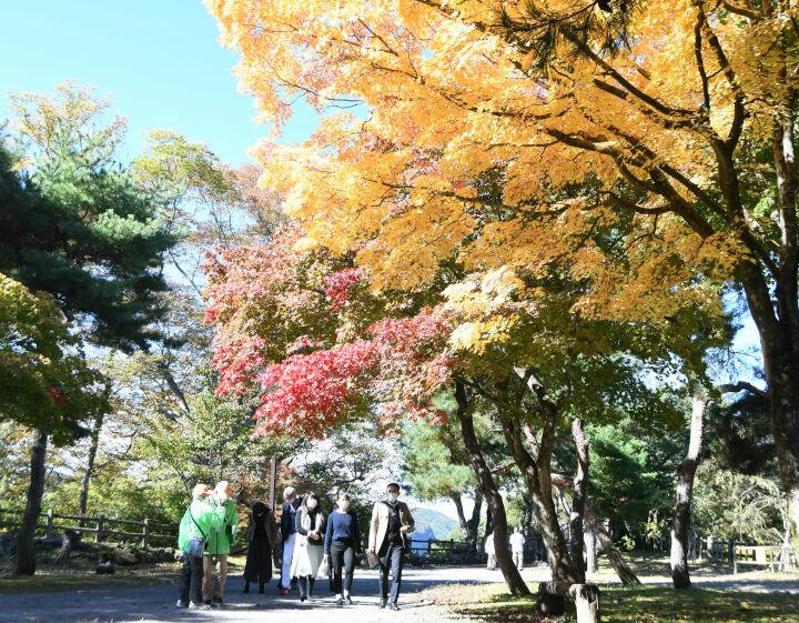 木々の葉が赤や黄に染まりだした園内を散策する観光客ら