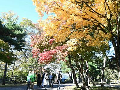 小諸・懐古園で紅葉まつり始まる