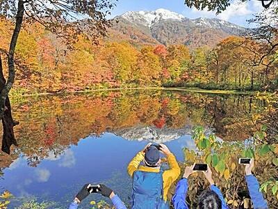 秋と冬 水鏡彩り 大野・刈込池で紅葉見頃 福井