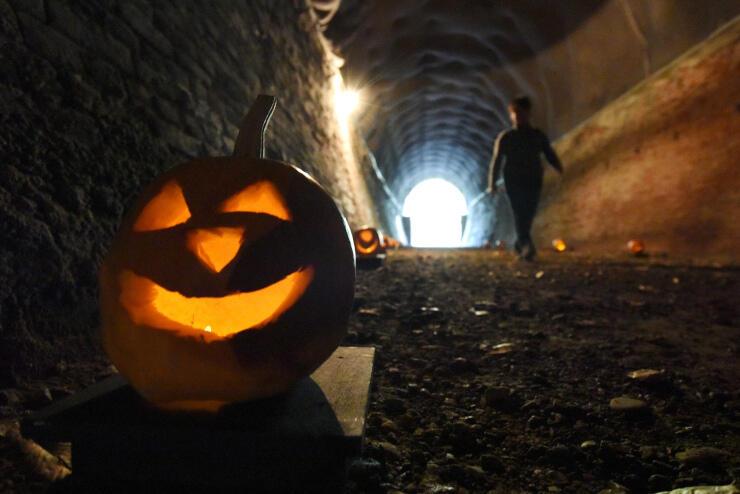 児童が作ったカボチャのランタンが並ぶトンネル