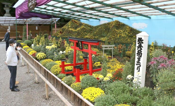 おやひこさまがテーマの大風景花壇=28日、弥彦村の弥彦神社