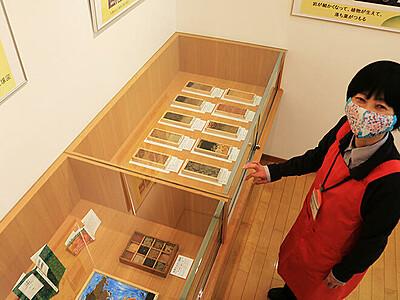 世界の土 魚津に集合 土壌学者藤井さん(立山出身)採取、市図書館で展示