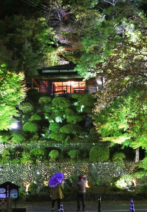 色づき始めたもみじが照らされている「楽山苑」のライトアップ=4日、長岡市与板町与板
