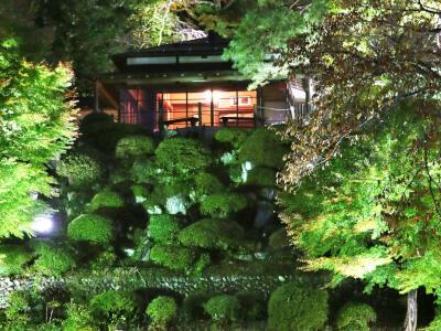 夜の紅葉 光につつまれ美しく 長岡・与板「楽山苑」