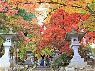 カエデのトンネル抜け秋の中へ 長野・清水寺の参道