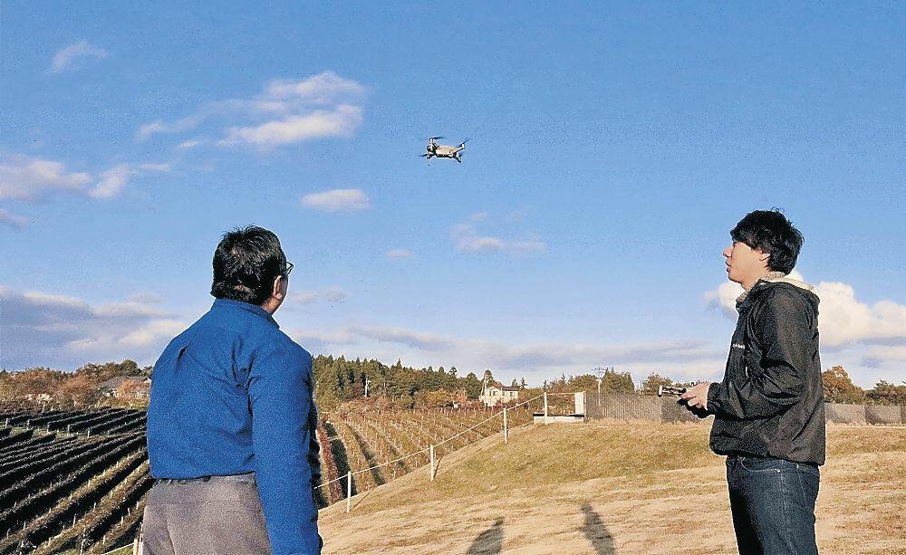 ドローンでブドウ畑を撮影する増田さん(右)と森本代表=穴水町旭ケ丘