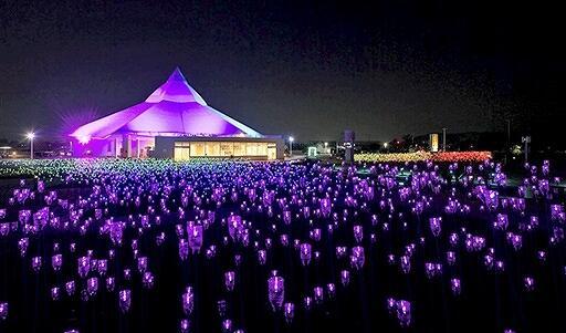 1万個の「ペットボタル」が輝くゆりの里公園=福井県坂井市春江町石塚