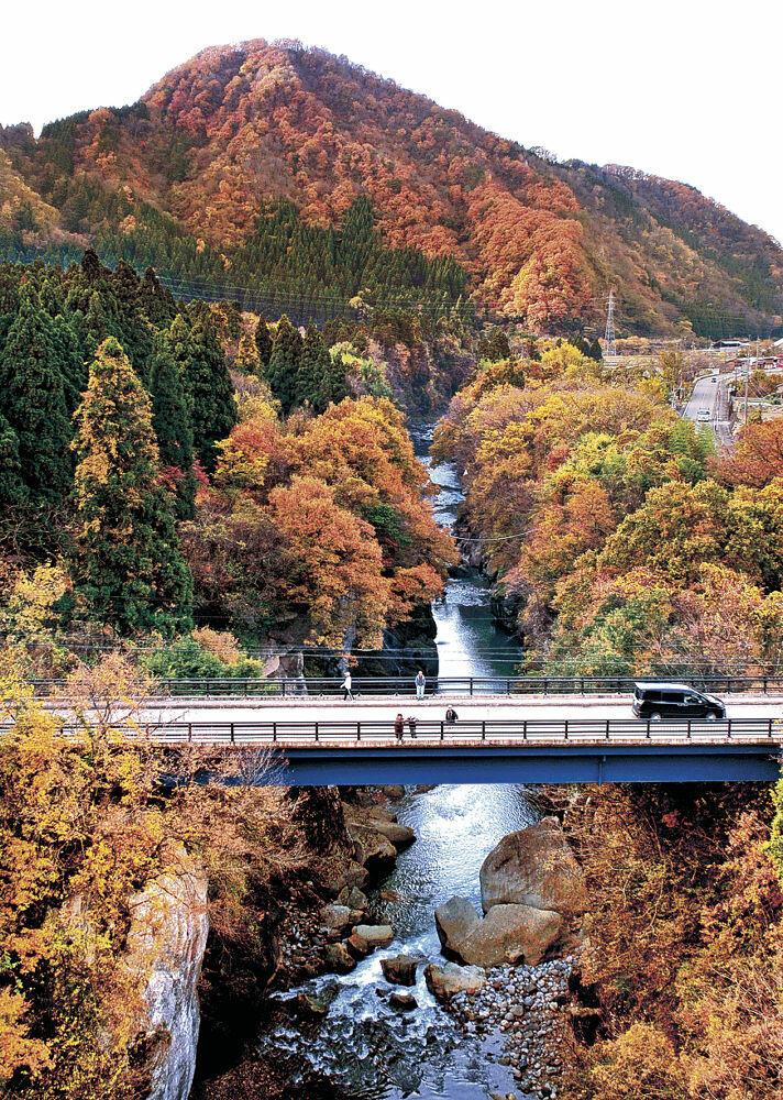 木々の紅葉が進み晩秋の風情を醸し出す手取峡谷不老橋周辺=白山市吉野(小型無人機から)