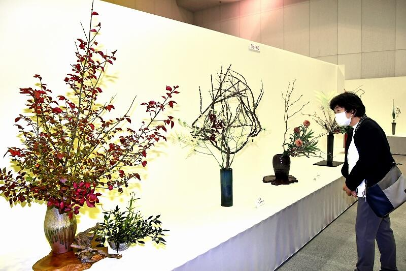 秋を感じさせる生け花が並ぶ「華のフェスティバル」=11月20日、福井県福井市のベルあじさいホール
