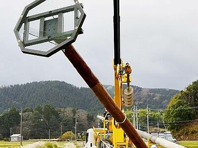 コウノトリ定着して 越前市に人工巣塔8基目設置