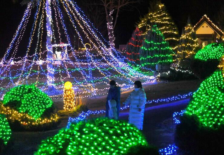 約16万個の発光ダイオード電球が庭園を彩る「おみ光のページェント」=1日午後7時56分、麻績村