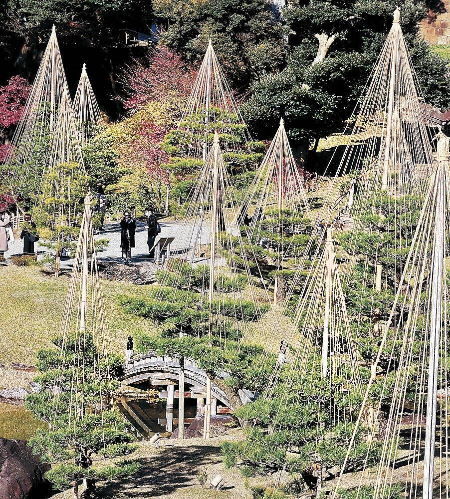 雪づりの施された園内を散策する来園者=金沢城公園玉泉院丸庭園