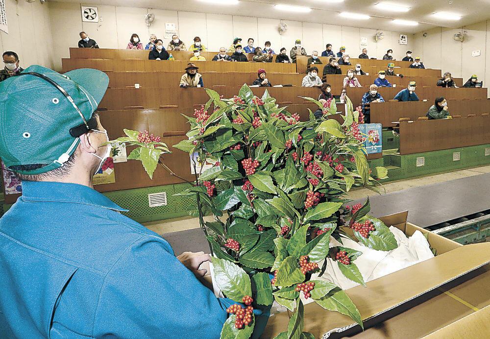 次々と競り落とされる正月向けの花木=市公設花き地方卸売市場