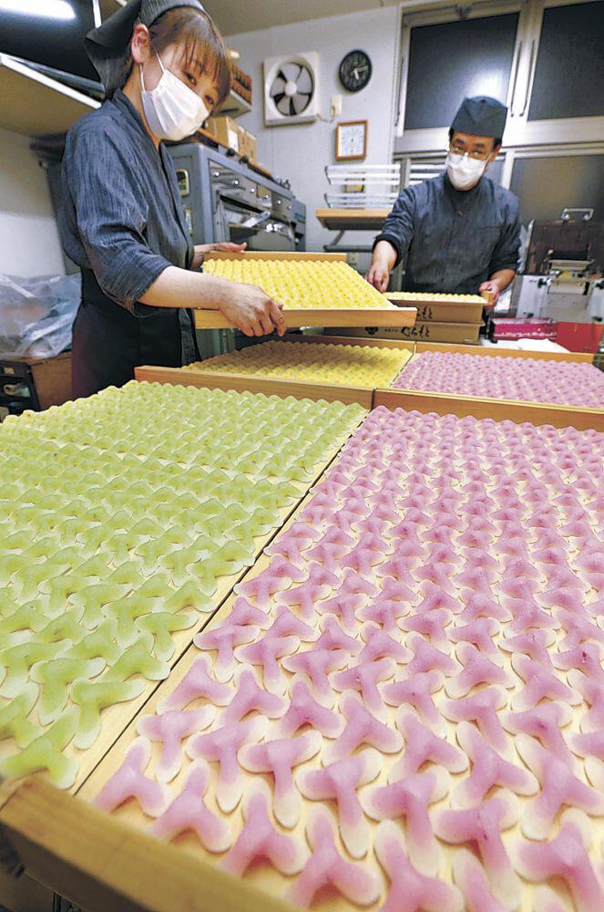 ずらりと並んだ色とりどりの辻占=白山市鶴来本町3丁目の和菓子店