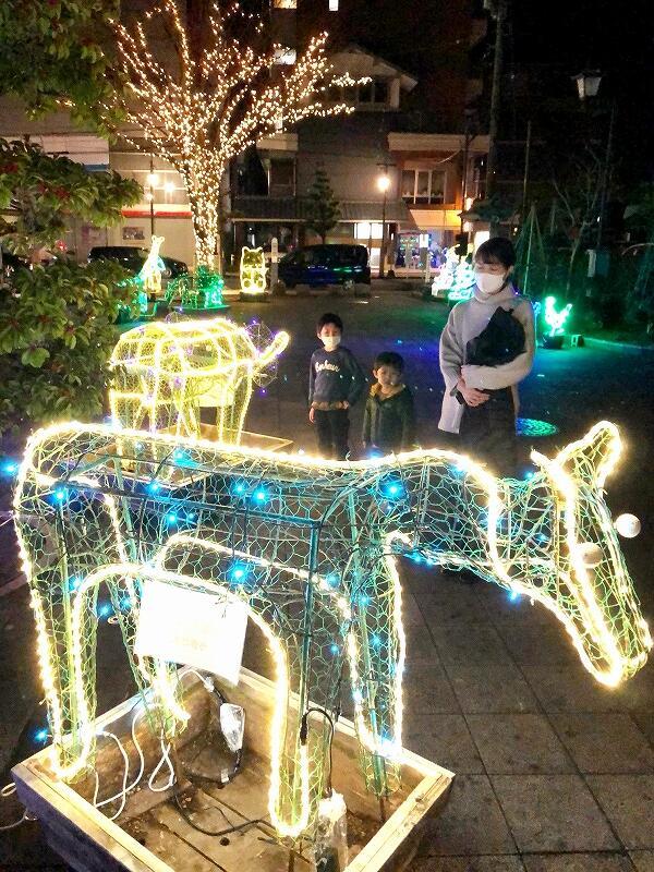 蔵の辻に「光の動物園」として設置されたイルミネーション=12月11日、福井県越前市蓬莱町