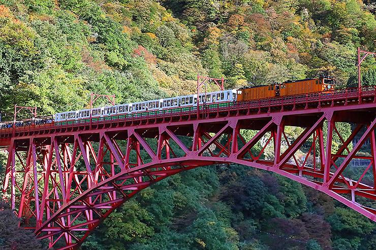 緑に囲まれた黒部峡谷を走るトロッコ電車