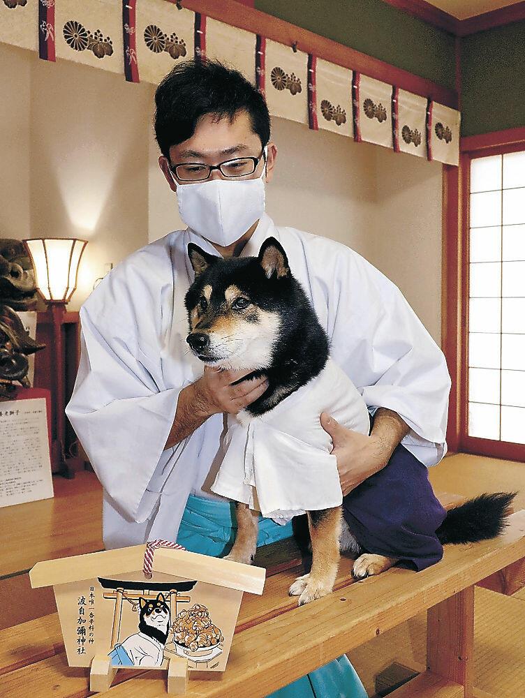神社の行事で活躍する宗二郎と田近規景さん=市内