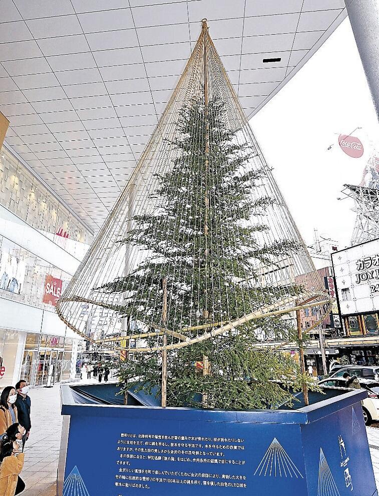 クリスマスツリーから雪づりの装飾に変わったモミの木=片町きらら広場