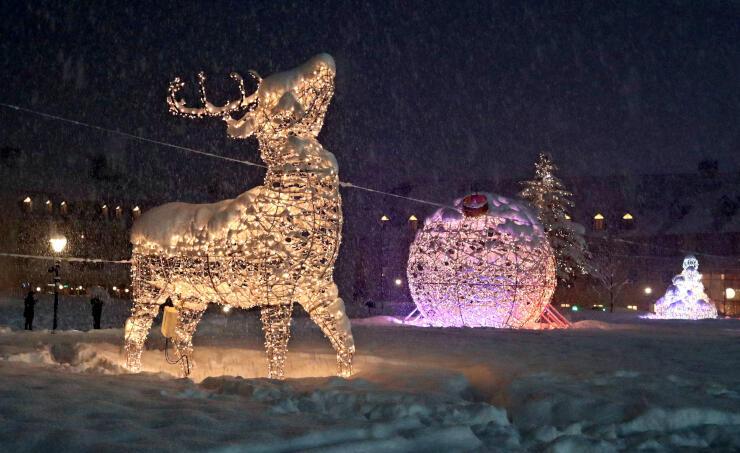 雪原に光のオブジェが浮かび上がったイルミネーション=25日夜、妙高市
