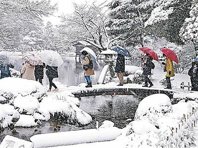 雪の兼六園堪能 無料開放