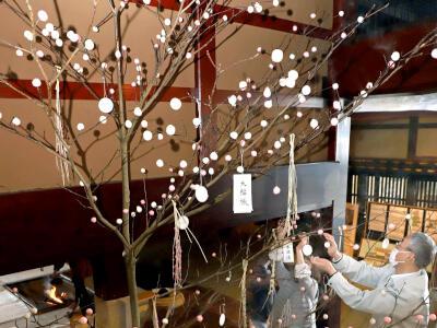 新年の幸せ願う「団子の木」 関川村・渡邉邸で伝統行事