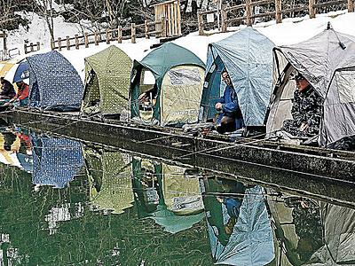 テントでヘラブナ狙う 能美「和気の池」
