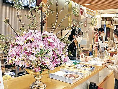 エアリーフローラ 金沢駅に彩りを 石川県花き振興地域協