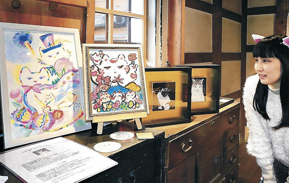 猫を題材にした作品と松岡さん=金沢市安江町